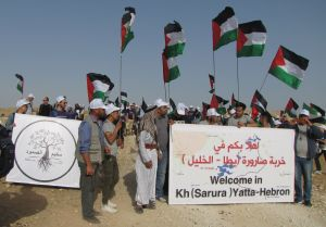 Sumud_signs_flags