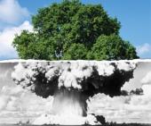 Nuclear.Cloud_Tree